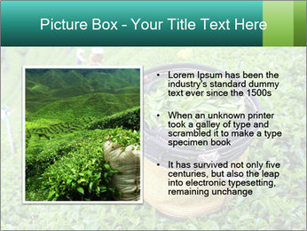 0000086183 PowerPoint Templates - Slide 13