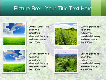 0000086183 PowerPoint Templates - Slide 14