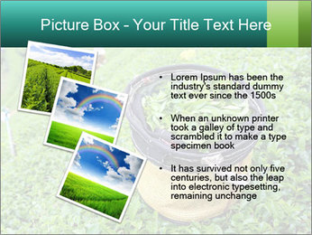 0000086183 PowerPoint Templates - Slide 17