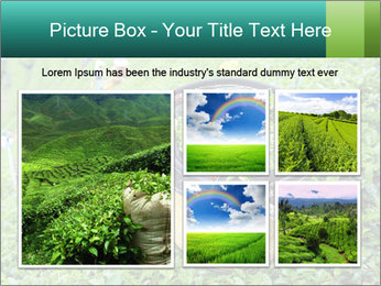 0000086183 PowerPoint Templates - Slide 19
