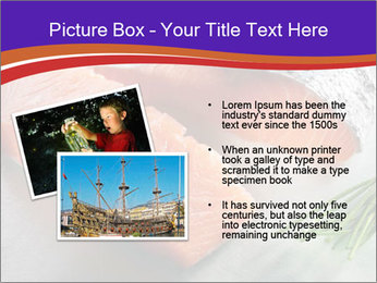 0000086187 PowerPoint Templates - Slide 20