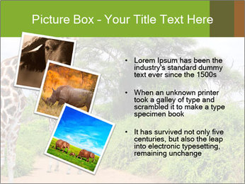 0000086195 PowerPoint Templates - Slide 17