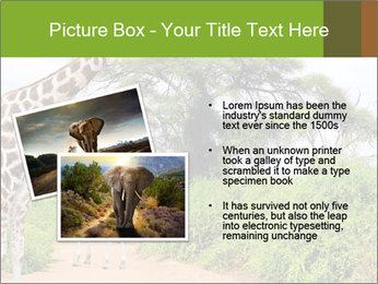 0000086195 PowerPoint Templates - Slide 20
