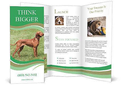 0000086206 Brochure Template