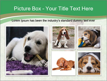 0000086206 PowerPoint Template - Slide 19
