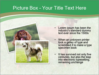 0000086206 PowerPoint Template - Slide 20