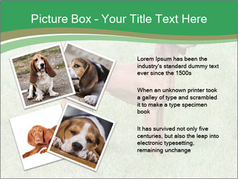 0000086206 PowerPoint Template - Slide 23