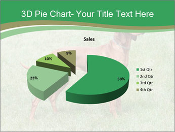 0000086206 PowerPoint Template - Slide 35