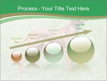 0000086206 PowerPoint Template - Slide 87