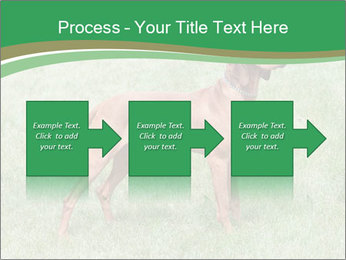 0000086206 PowerPoint Template - Slide 88