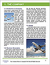0000086207 Word Template - Page 3
