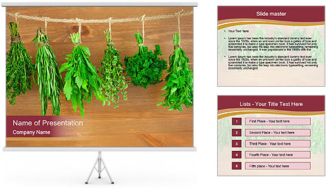 0000086213 PowerPoint Template