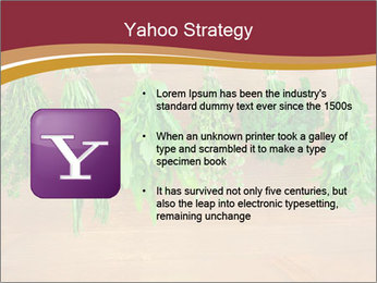0000086213 PowerPoint Template - Slide 11