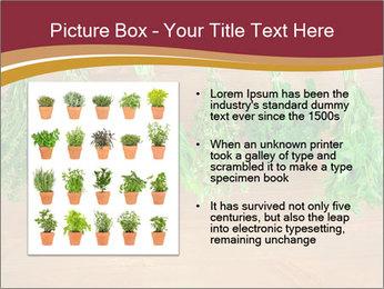 0000086213 PowerPoint Template - Slide 13