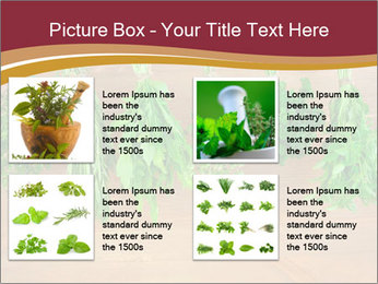 0000086213 PowerPoint Template - Slide 14
