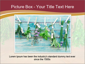 0000086213 PowerPoint Template - Slide 15