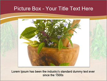 0000086213 PowerPoint Template - Slide 16
