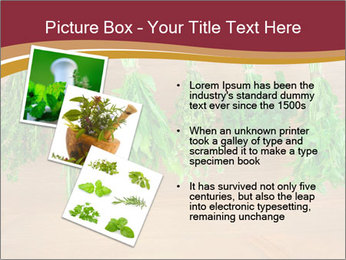 0000086213 PowerPoint Template - Slide 17