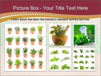 0000086213 PowerPoint Template - Slide 19