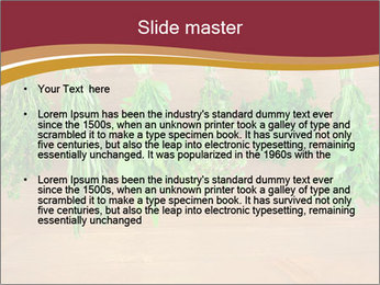 0000086213 PowerPoint Template - Slide 2