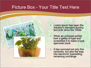 0000086213 PowerPoint Template - Slide 20