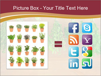 0000086213 PowerPoint Template - Slide 21