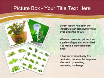 0000086213 PowerPoint Template - Slide 23