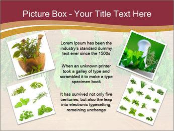 0000086213 PowerPoint Template - Slide 24