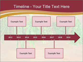 0000086213 PowerPoint Template - Slide 28