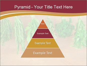 0000086213 PowerPoint Template - Slide 30