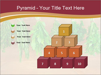 0000086213 PowerPoint Template - Slide 31