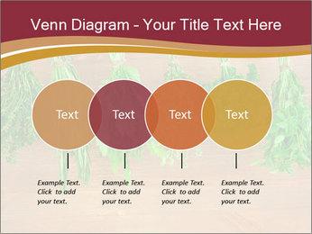 0000086213 PowerPoint Template - Slide 32