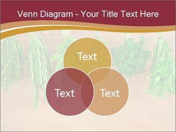 0000086213 PowerPoint Template - Slide 33