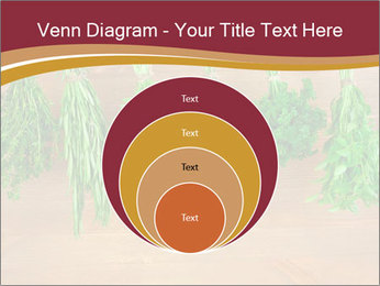 0000086213 PowerPoint Template - Slide 34