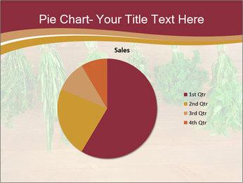 0000086213 PowerPoint Template - Slide 36