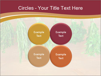 0000086213 PowerPoint Template - Slide 38