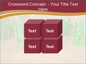 0000086213 PowerPoint Template - Slide 39