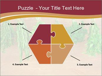 0000086213 PowerPoint Template - Slide 40
