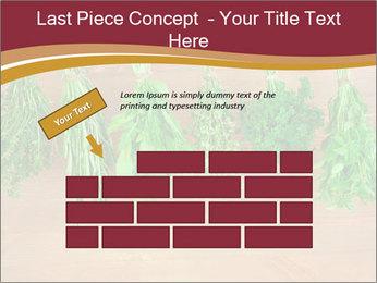 0000086213 PowerPoint Template - Slide 46