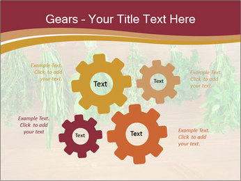 0000086213 PowerPoint Template - Slide 47