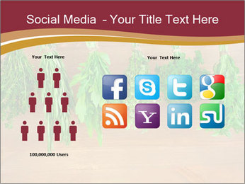 0000086213 PowerPoint Template - Slide 5