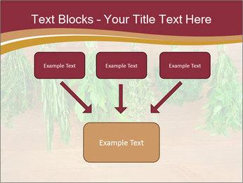 0000086213 PowerPoint Template - Slide 70