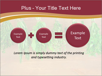 0000086213 PowerPoint Template - Slide 75