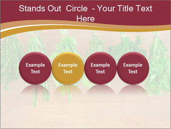 0000086213 PowerPoint Template - Slide 76
