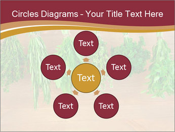 0000086213 PowerPoint Template - Slide 78