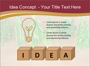 0000086213 PowerPoint Template - Slide 80