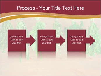 0000086213 PowerPoint Template - Slide 88
