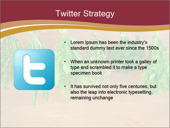0000086213 PowerPoint Template - Slide 9