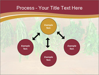 0000086213 PowerPoint Template - Slide 91