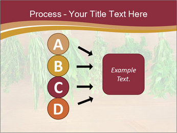 0000086213 PowerPoint Template - Slide 94